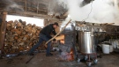 A worker fills the evaporator oven with logs at the Constantin Gregoire sugar shack in Saint-Esprit, Quebec on March 31, 2020. (AFP)