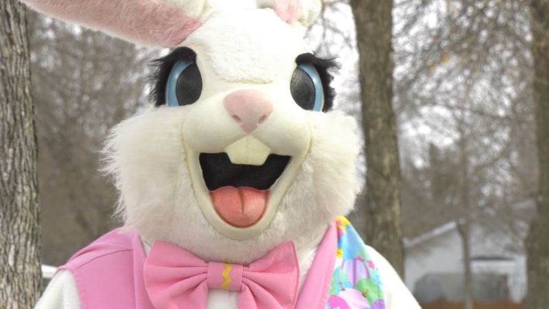 """The Easter bunny will come this weekend because we all know the Easter Bunny is an essential service,"" said McNeil. ""But, the Easter Bunny should be your only visitor this weekend."""