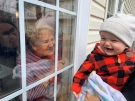 Great grandmother visit in retirement home during the COVID-19 pandemic. (G E Timm/CTV Viewer)