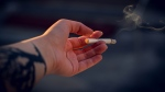 Scientists are warning smokers that they should quit before COVID-19 attacks their lungs, as research shows that the virus may hit those with weakened lung defences more severely. (Irina Iriser / Pexels)