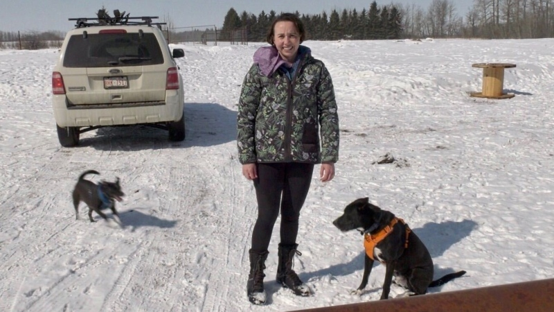 Shanin Neff, owner of Awesome Pawsome Ranch south of Spruce Grove, has just opened a private off-leash dog parks for pet owners to get some exercise for their furry friends while maintaining physical distancing. April 6, 2020. (CTV News Edmonton)