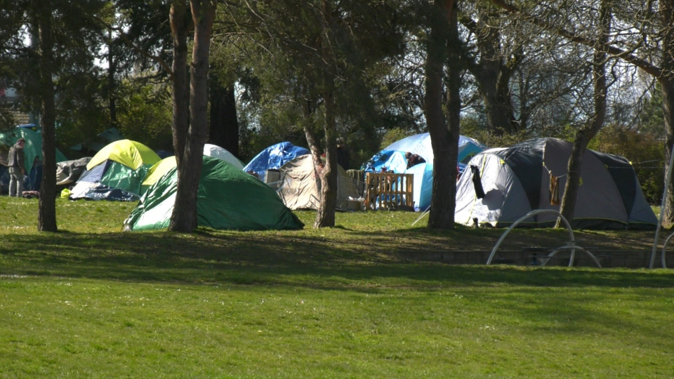 Tents assembled at the temporary outdoor homeless shelter at Topaz Park are shown: April 7, 2020 (CTV News)