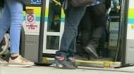 Transit Windsor users seek legal advice
