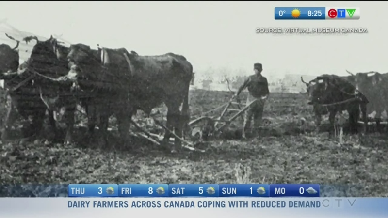 Manitoba Minute: Immigration boom of the 1900s
