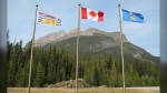 East Kootenay politicians have voted in favour of a proposal to prohibit non-essential travel between Alberta and B.C. (file)