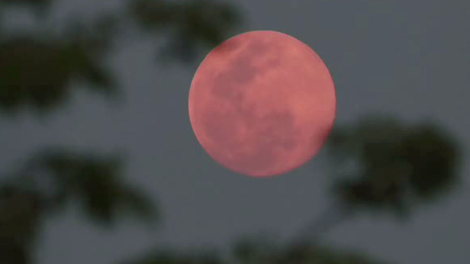 Why is it called a 'super pink moon?'