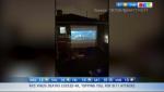 Neighbourhoods party, movie night