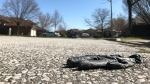 A discarded glove sits on the road in Windsor, Ont., on Wednesday, April 8, 2020. (Michelle Maluske / CTV Windsor)
