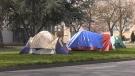 Plans for shelter at Royal Athletic Park slashed