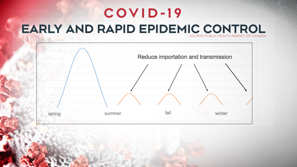 Pandemic projections - epidemic control