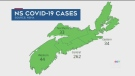 COVID-19 claims another life in N.S.