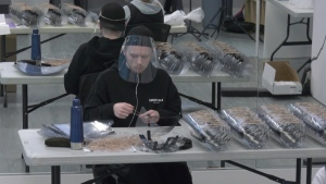 Thousands of face shields are being put together in a Port Coquitlam dance studio.