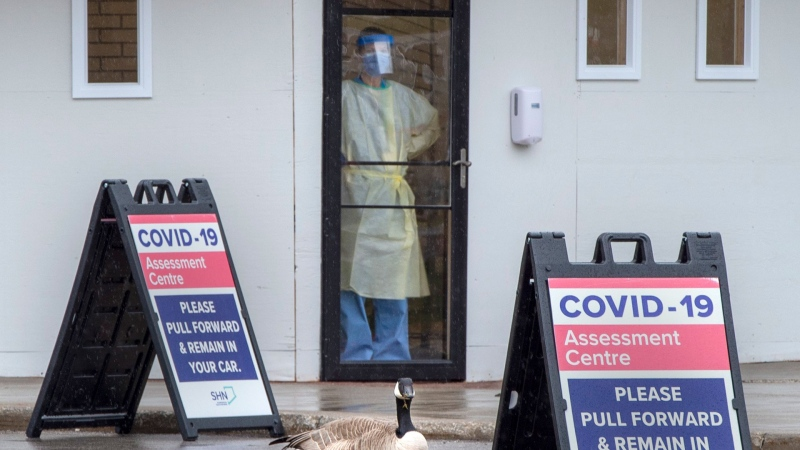 A Canada Goose is the only visitor outside at a Covid-19 testing centre in Toronto on Monday April 13, 2020. THE CANADIAN PRESS/Frank Gunn