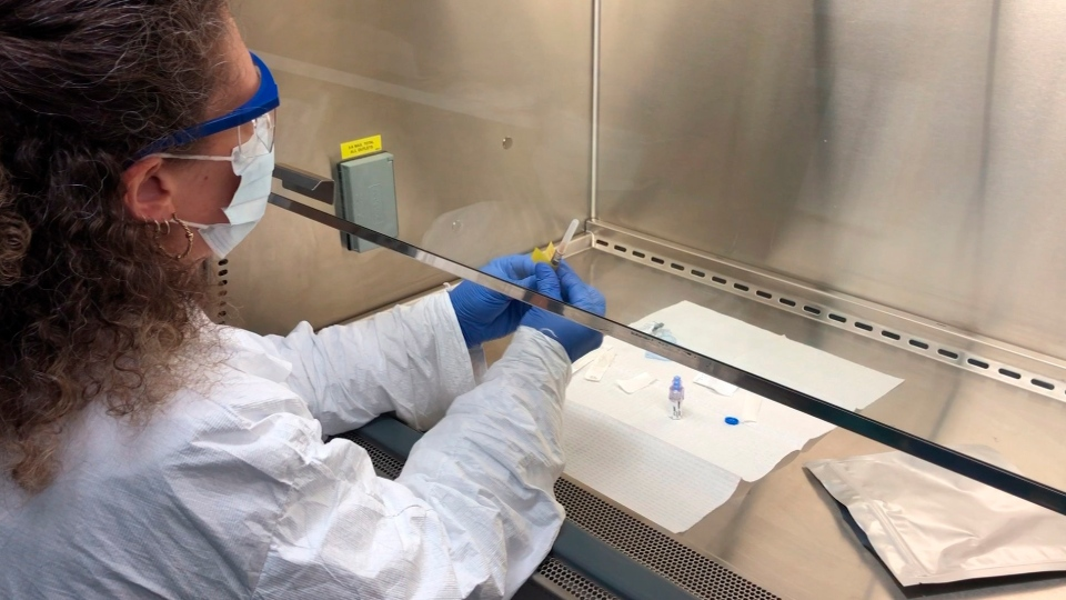 In this Wednesday, April 8, 2020 photo provided by the Center for Pharmaceutical Research, a pharmacy technologist using a biosafety level 2 hood prepares a COVID-19 coronavirus vaccine candidate for testing in Kansas City, Mo. (Center for Pharmaceutical Research via AP)