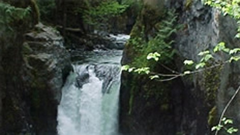 A young boy has been reunited with his parents after spending more than 16 hours alone in the Englishman River Falls Provincial Park near Nanaimo, B.C. (BC Parks)