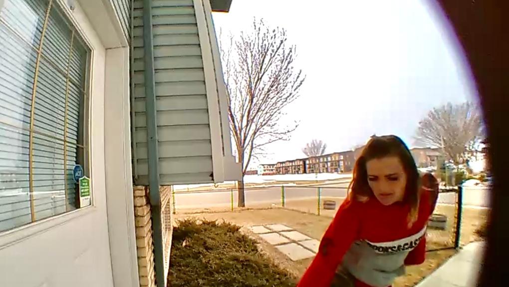 Alleged porch pirate