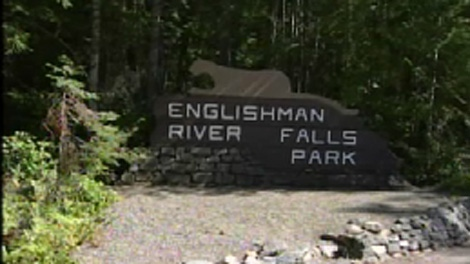 The Englishman River Falls Provincial Park near Nanaimo, B.C., is seen in this CTV News file image.