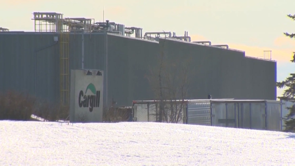Cargill Protein says it hasn't laid off any workers at its High River, Alta. facility, despite what the union has said.