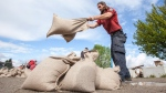 Graham Williams with the BC Wildfire Service helps out with preparing sandbags at one of the many Emergency Sandbagging Stations around Kelowna, B.C., on Friday, May 12, 2017. (THE CANADIAN PRESS/Jeff Bassett)