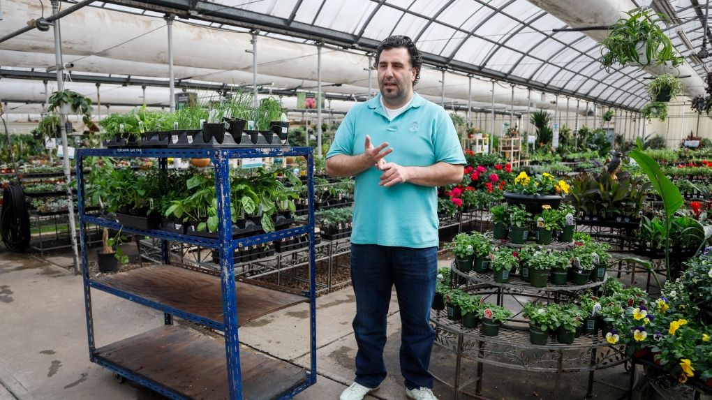 Canadian Greenhouses Struggling With Economic Reality Of Covid 19 Ctv News