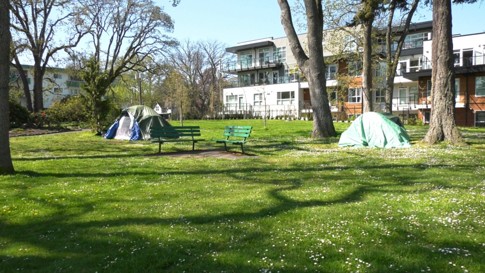 Stadacona Park in Victoria has become a makeshift homeless camp for youth to escape the problems of larger camps. (CTV News)