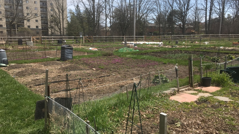 The Berkshire Community Garden in London, Ont. is seen Saturday, April 25, 2020. (Brent Lale / CTV London)