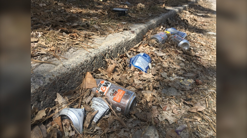 North Bay trash