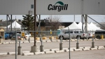 Cargill announced a temporary shut down of its beef plant near High River where officials in the area are dealing with over 400 cases of COVID-19 linked to the plant, including the death of a worker, in High River, Alta., Thursday, April 23, 2020. THE CANADIAN PRESS/Jeff McIntosh