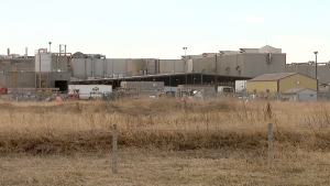 A vaccination clinic planned for Cargill workers at the plant outside High River, Alta. has been postponed. (file)