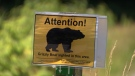 Warning of a grizzly bear sighting. (File photo)
