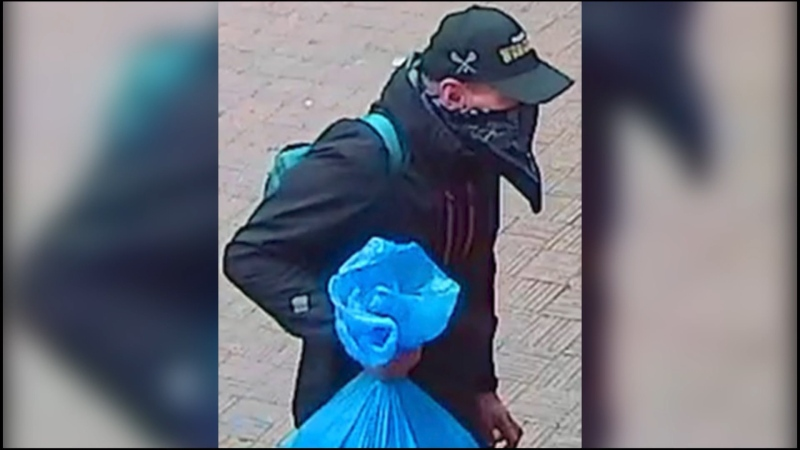 Why did police wait to release suspect image?