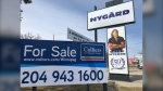 For sale signs can be seen in front of several Nygard stores in Winnipeg. (CTV News Photo Ken Gabel)