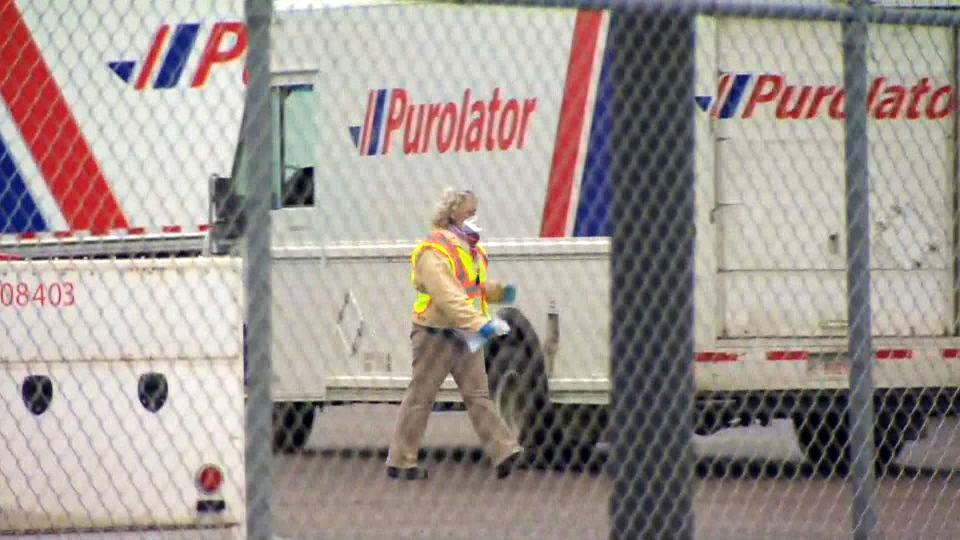 Thirty cases of the COVID-10 virus have been confirmed in employees of Aero Drive Purolator location in northeast Calgary.