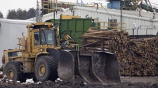 The Tembec softwood lumber plant in operation Thursday Nov 13, 2008 in Senneterre, Que. (THE CANADIAN PRESS/Jacques Boissinot)