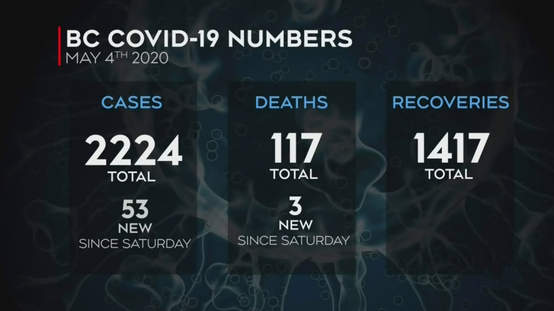 53 new cases of COVID-19