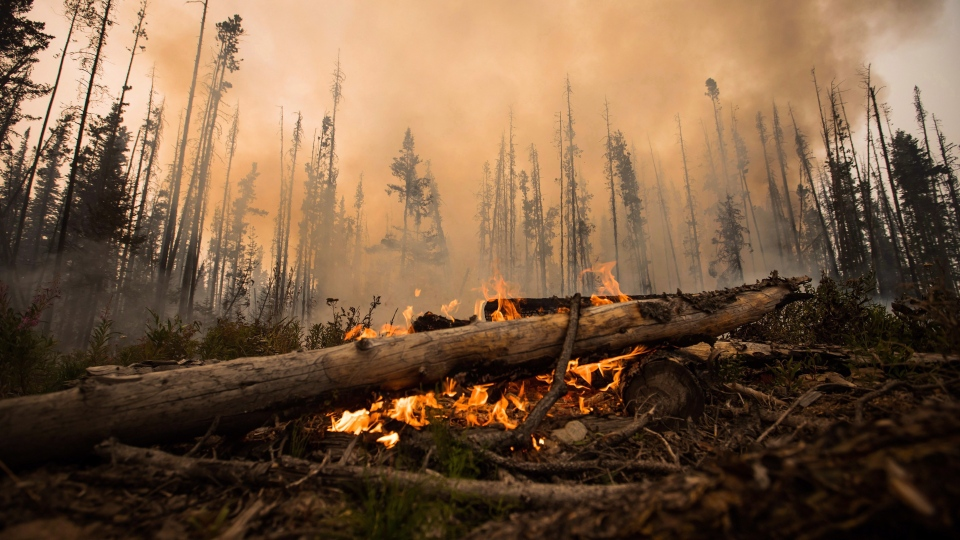 A wildfire burns on a logging road approximately 20 km southwest of Fort St. James, B.C., on Wednesday, Aug. 15, 2018. (Darryl Dyck / THE CANADIAN PRESS)