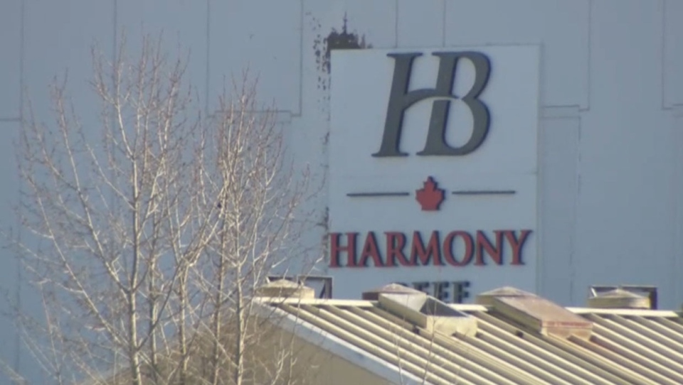 Several dozen cases of COVID-19 have been confirmed at Harmony Beef, located in Balzac, Alta.