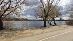 Wascana Park is seen in this file photo. (Gareth Dillistone/CTV News)