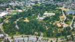 Queen Elizabeth Park is seen in Vancouver in June 2019. (Pete Cline / CTV News Vancouver)