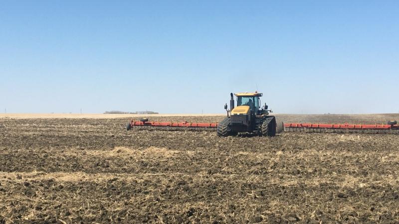 A farmer works on their field near Regina on May 7, 2020 (Katy Syrota / CTV News Regina)