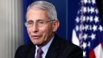 In this Wednesday, April 22, 2020, file photo, Dr. Anthony Fauci, director of the National Institute of Allergy and Infectious Diseases, speaks about the new coronavirus in the James Brady Press Briefing Room of the White House, in Washington. Three members of the White House coronavirus task force, including Fauci, have placed themselves in quarantine after contact with someone who tested positive for COVID-19, another stark reminder that not even one of the nation's most secure buildings is immune from the virus. (AP Photo/Alex Brandon, File)