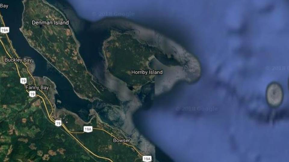 Hornby Island is located off the east side of Vancouver Island, between Parksville and Courtenay. (Google Maps)