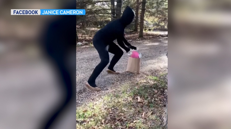 Janice Cameron's video of a ninja dropping off a bottle of wine for a member in isolation (Alberta Wine Ninjas)