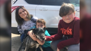 "Ana-Marie Rice, her family and 12-year-old Alaskan Husky ""Maj"" were taking a Mother's Day stroll through the woods when her son, who was holding the leash, tripped. May 17/2020 (Eric Taschner/CTV News Northern Ontario)"
