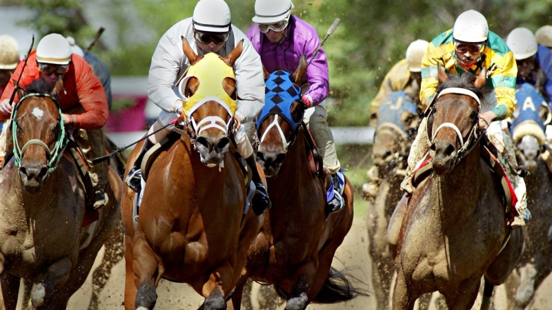 In this file photos, Erika's Lass riden by Rohan Singh, right, makes a move to win over the favorite Miss Marvic, riden by Gary Stein, front, center (white jacket with yellow horse blinder), to win the stakes race at Assiniboia Downs Sunday June 12, 2005. (CP PHOTO/ Winnipeg Free Press/ Joe Bryksa)