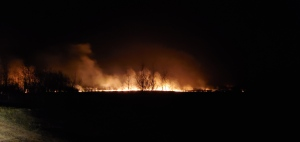 View of English Wildfire from a farm in Smeaton (Courtesy: Ryan Reid)