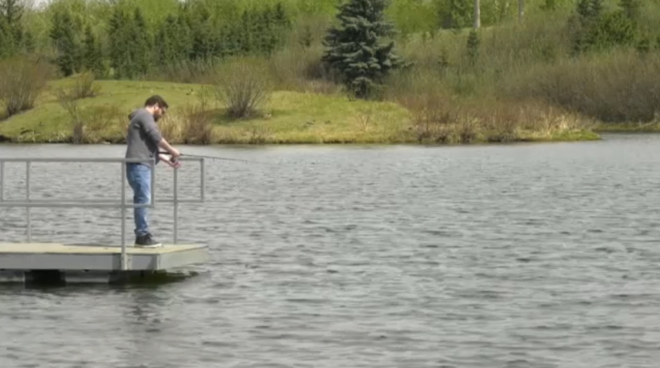 Two Edmonton-area ponds have fish in them again after two years without.