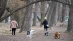 Dog walkers practice physical distancing at the Cherry Beach off leash dog park in Toronto on Thursday, March 26, 2020. THE CANADIAN PRESS/Nathan Denette