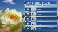 Lots of sunshine in store for northeastern Ontario