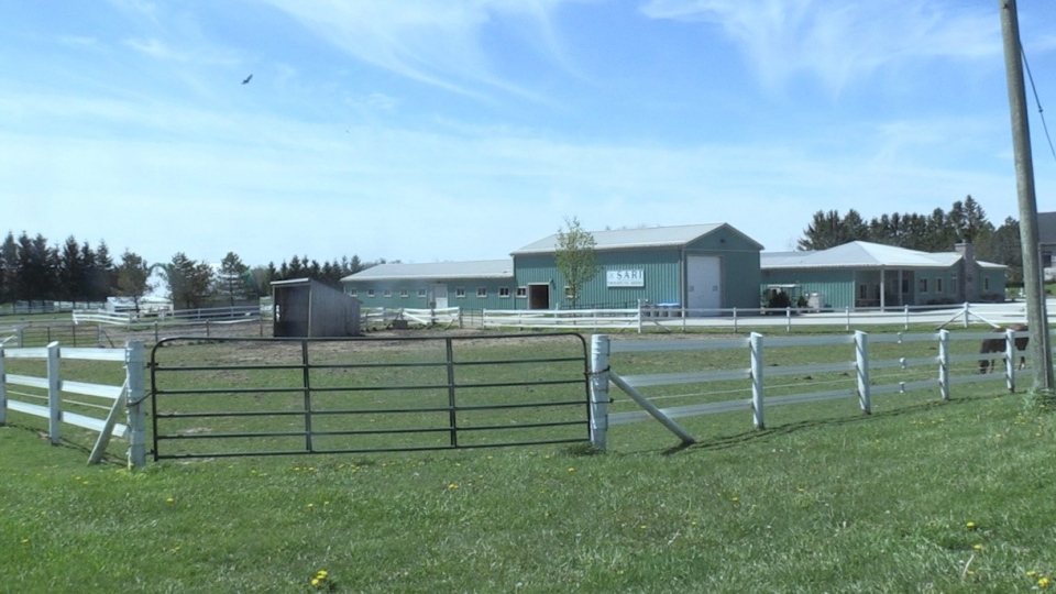 SARI, a therapeutic horse-riding facility is seen near London, Ont. on Wednesday, May 20, 2020. (Jordyn Read / CTV London)